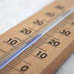 鈴虫の飼育環境について。温度ってどれくらい!?